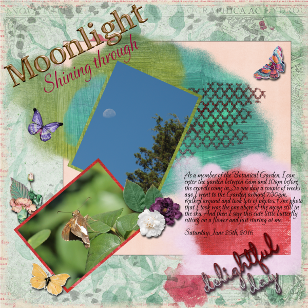 Moon over The Garden -- Slow Scrap July 2016