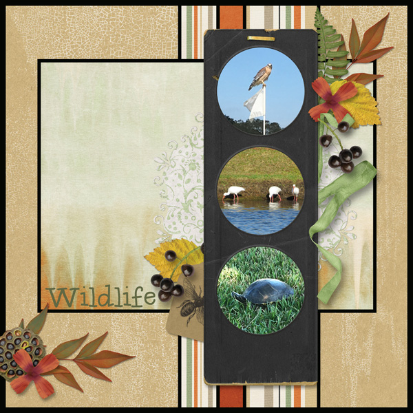 Jan Slow Scrap Week 4