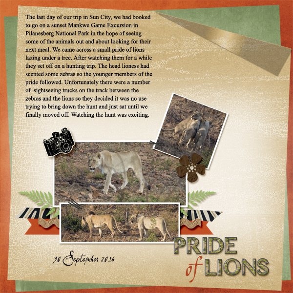 Oct CSS4 - Pride of Lions