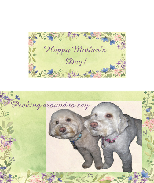 iNSD Mother's Day card challenge