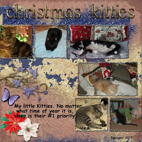 Christmas Kitties -- Week Two