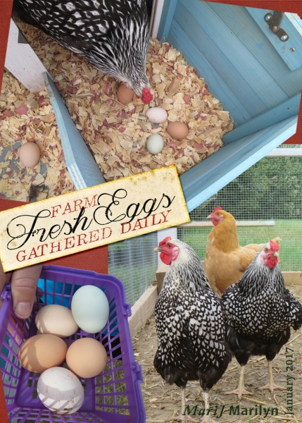 "Jan 2017 ATC Farm ""Fresh"" Eggs"