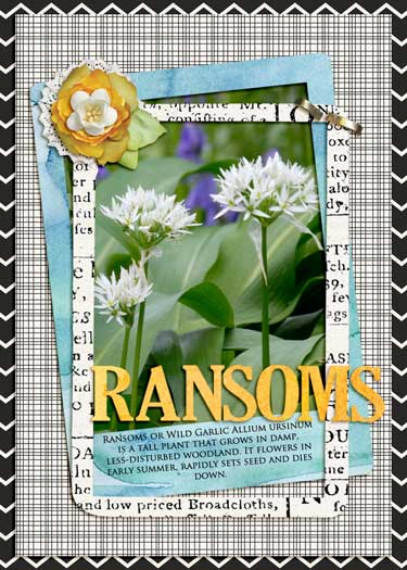 May ATC - Ransoms