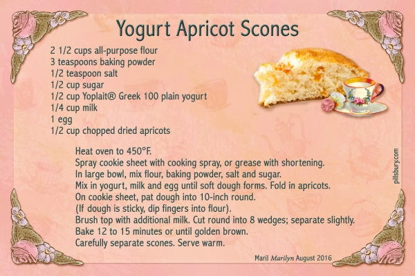 Aug 2016 SG Recipe Swap: Snacks - Yogurt Apricot Scones