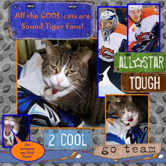 All The Cool Cats