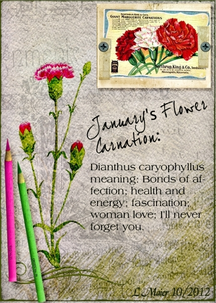 Fri Cust Challenge: January/Carnation