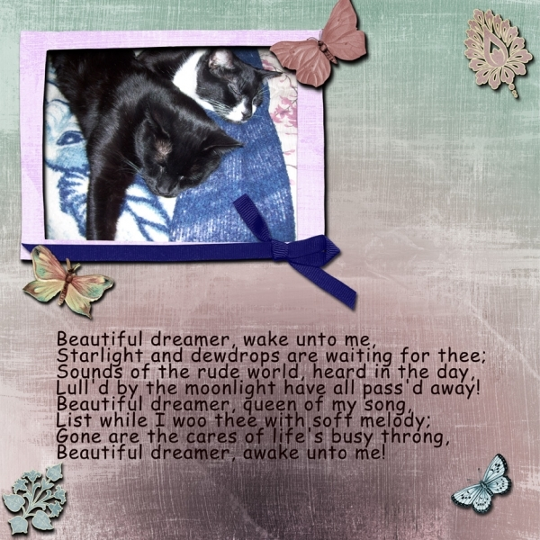 Tuesday 1-8-13 Freebie Challenge -- Beautiful Dreamers