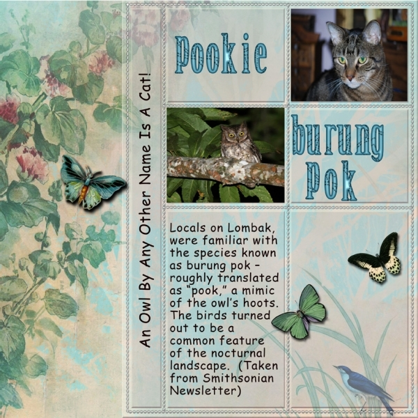 Friday Scraplift 2-8-13 -- An Owl By Any Other Name....