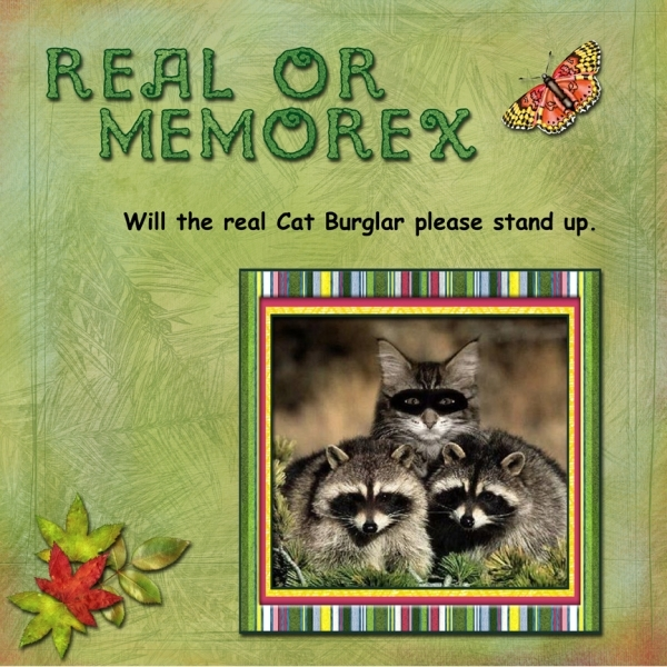 Real or Memorex