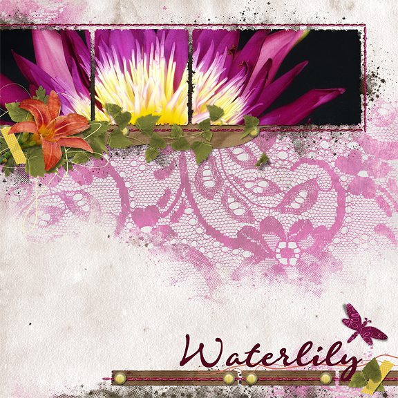 Waterlily  - Scraplift 3/14