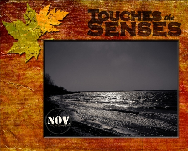 touch the senses