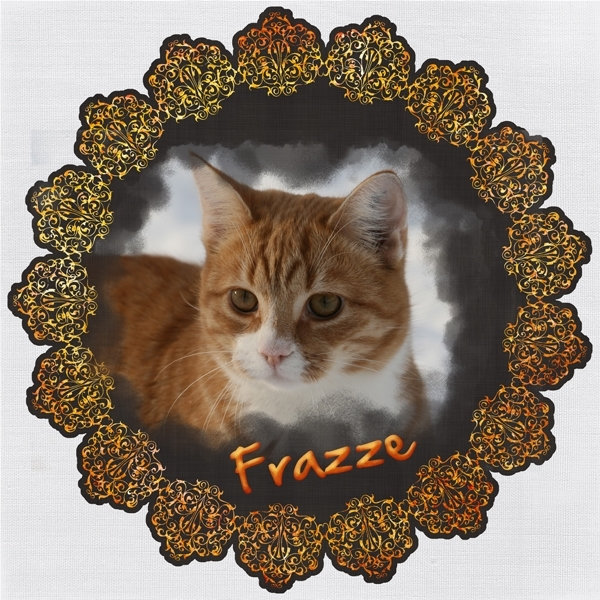 Saturday Frazze