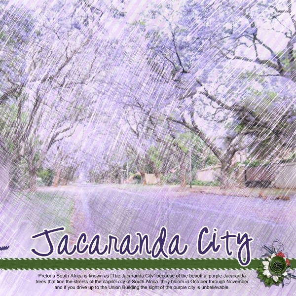 Jacaranda City right