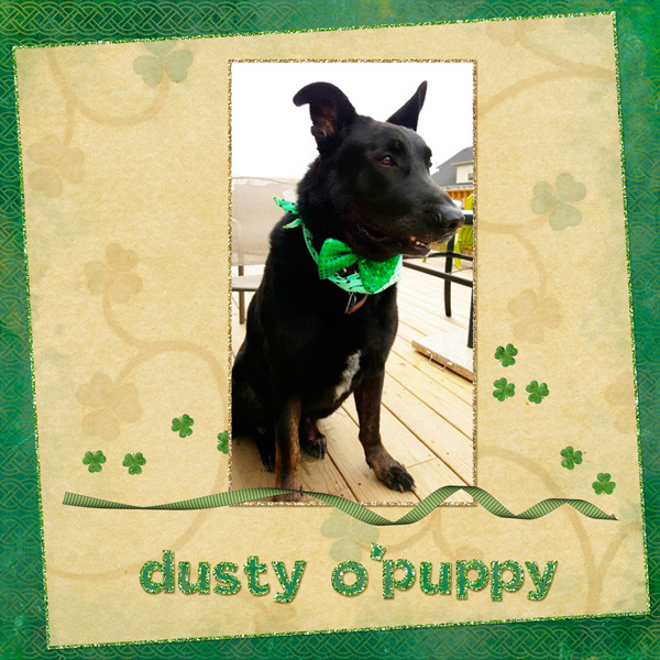 Dusty O'Puppy!