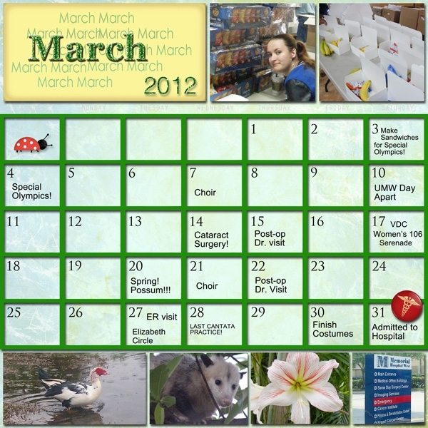 Project SG Challenge 2012, March calendar