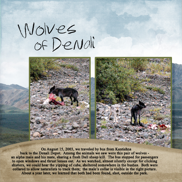 Wolves of Denali, left