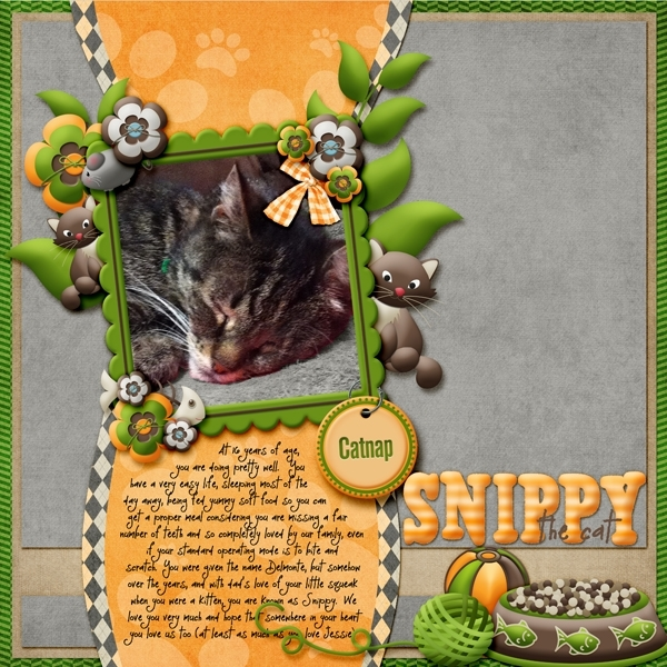 Snippy the Cat