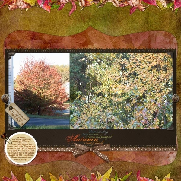 Build Your Own Cake: Autumn in our yard