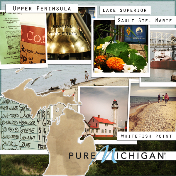 Michigan Travel Board!