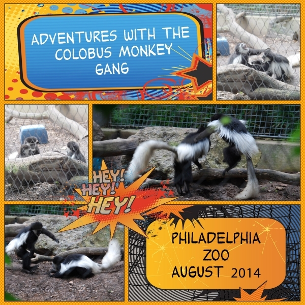 Adventures with the Colobus Monkey Gang