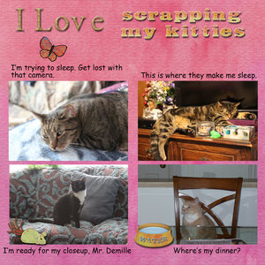 My-Kitty-Kats.jpg What I Love About Scrapping