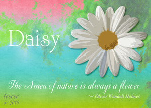 May ATC Daisy