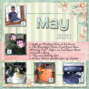 Project 12-May 2011