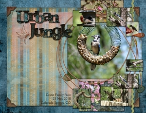 Urban Jungle (speed scrap 6/24/10)
