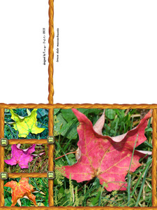 Task 6 Sept MB Game Front/Back of Card