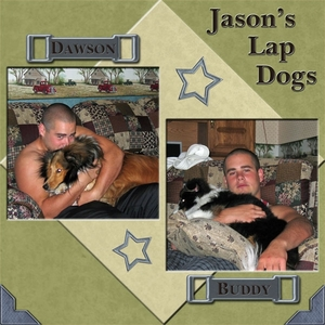 JASON'S LAP DOGS