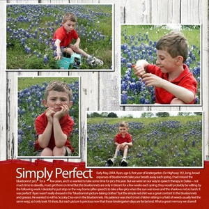 Spring 2004 Bluebonnets (2 of 3)