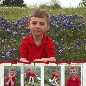 Spring 2004 Bluebonnets (3 of 3)