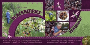 blackberries whole page