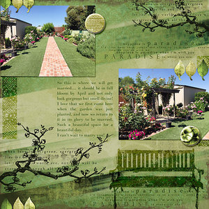 layout for Jopke's new Evergreen collection