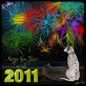 Happy New Year to All!