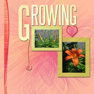 Re-JUNE-venate: Task 19: Growing