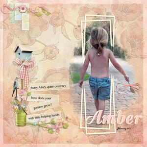 Amber - little helper