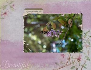 Oct 28 - Beautiful - Little Flowers