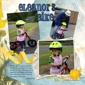 June challenge 1: Eleanor's Bike