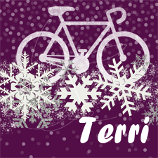 Terri's winter bike