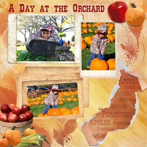 A Day at the Orchard