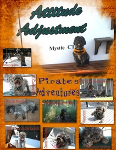 Pirate's adventure