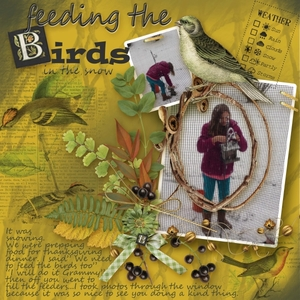 Blog Challenge-Feeding The Birds.