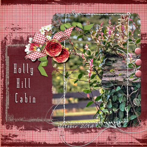 holly hill cabin
