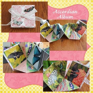 Accordian Album-Butterflies