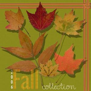 2006 Fall Collection