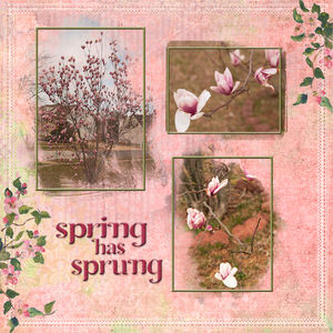 Spring has Srupng