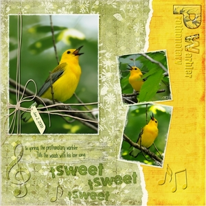 5 Techniques game-Prothonotary warbler