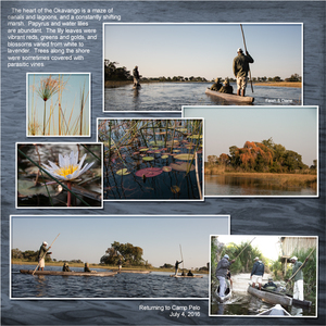 Exploring the Okavanga Delta