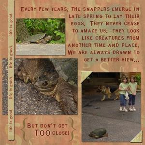The Year of the Snapping Turtles Page 2